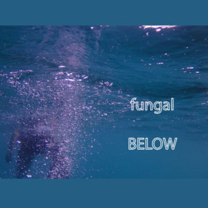 Fungal Below [Digital Single]